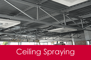 ceiling spraying service